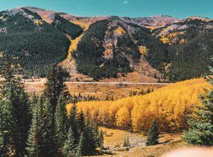 Scenic autumn view